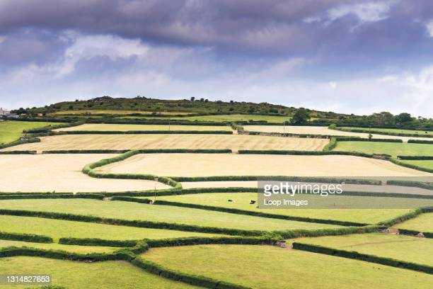 Patchwork of fields on Bodmin Moor in Cornwall.