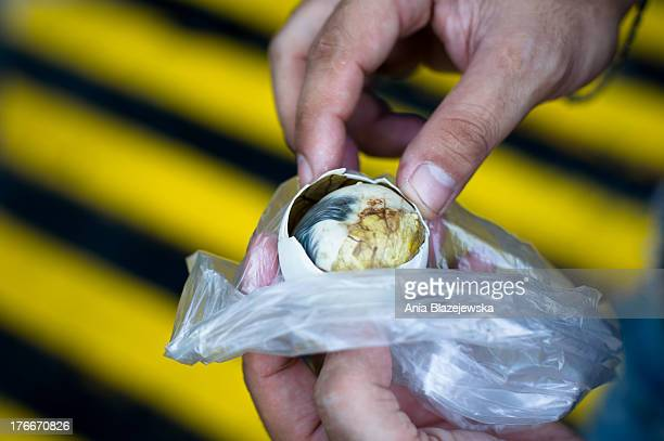 CONTENT] Pateros of the cities of Metro Manila has been famous since many years for balut business Balut is the popular Filipino delicacy