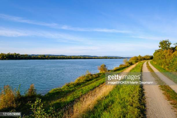 path along the banks of the inn below the mouth of the salzach, near braunau am inn, innviertel, upper austria, austria - upper austria stock pictures, royalty-free photos & images