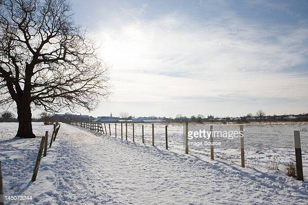 Path and field covered in snow