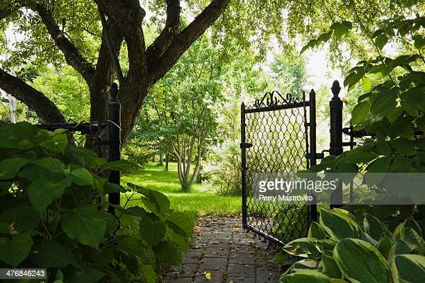 path and open garden gate in spring - chainlink fence stock pictures, royalty-free photos & images