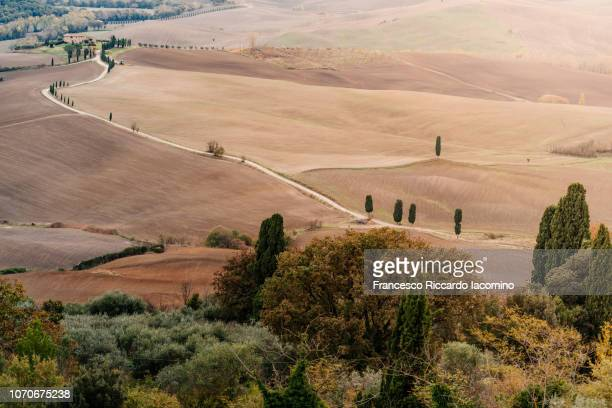 Path and unpaved road in Tuscany