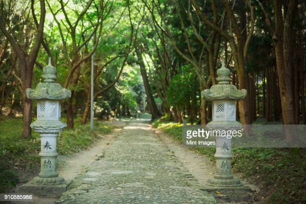 path at shinto sakurai shrine, fukuoka, japan. - shrine stock pictures, royalty-free photos & images