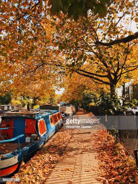 Path covered with autumn leaves in Little Venice, London, UK