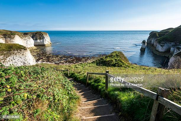 path down to selwicks bay, north yorkshire - yorkshire england stock pictures, royalty-free photos & images