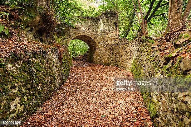path from porlock to culbone, exmoor national park, somerset, uk - southwest stock pictures, royalty-free photos & images