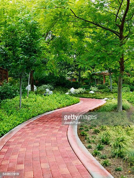 path in the japanese tea garden in balboa park - balboa park stock photos and pictures