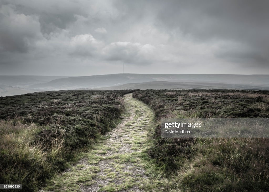 Path in the North York Moors National Park : Stock Photo