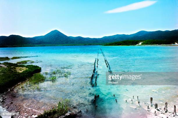 path into the water - aomori prefecture stock pictures, royalty-free photos & images