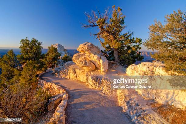 Path leading to Bright Angel Point, Grand Canyon Lodge, North Rim, Grand Canyon National Park, Arizona, USA