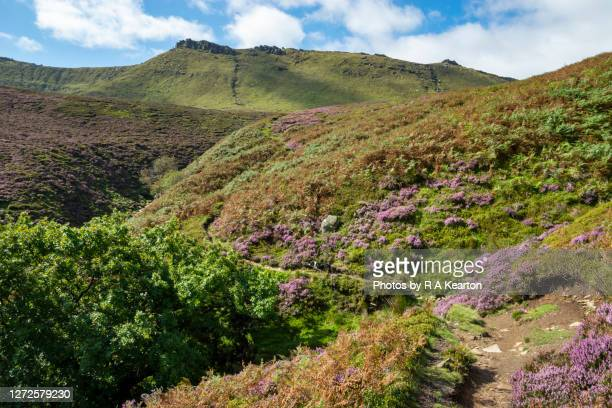 path leading to kinder scout, fairbrook, peak district, derbyshire - footpath stock pictures, royalty-free photos & images