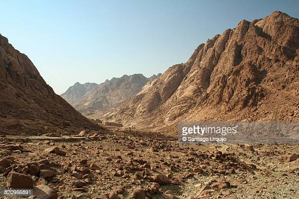 Path leading to Mount Sinai