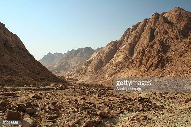Path leading to Mount Sinai