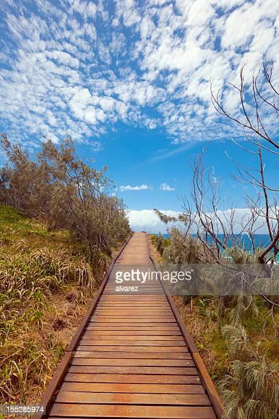 Path leading to the sea
