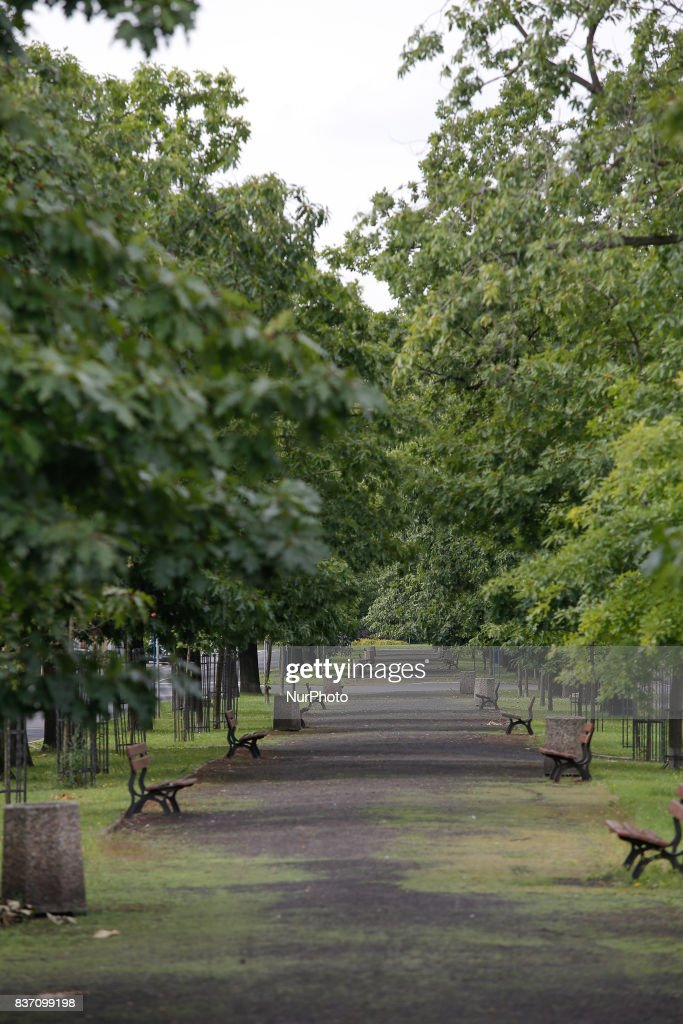 A path lined with trees and benches is seen between the two side of the Ossolinksy Alley in the center of the city in Bydgoszcz, Poland on 19 August, 2017.