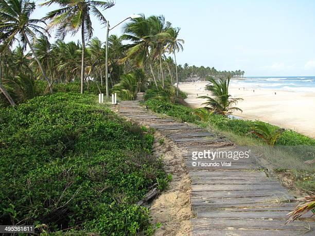 Path near Sea