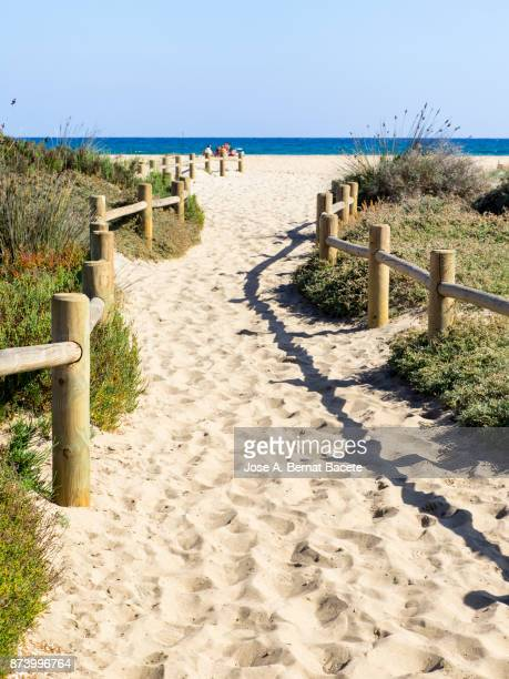 Path of sand that he leads to the beach between dunes with flowers and grasses with posts of wood, a day of the Sun and blue sky. Cala de Monsul, Cabo de Gata - Nijar Natural Park,  Almeria,  Andalusia, Spain