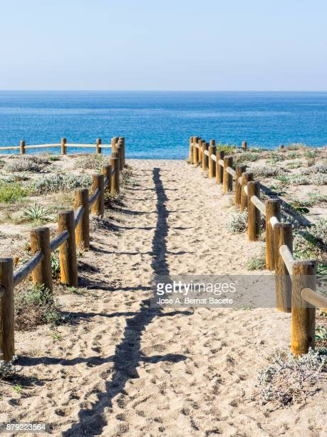 Path of sand that he leads to the beach between dunes with flowers and grasses with posts of wood, a day of the Sun and blue sky. Las Salinas Beach, Cabo de Gata - Nijar Natural Park,  Almeria,  Andalusia, Spain