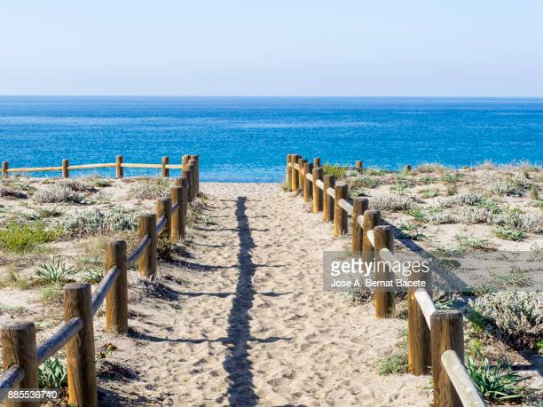 Path of sand that he leads to the beach between dunes with flowers and grasses with posts of wood, a day of the Sun and blue sky. Beach de las salinas del Cabo de Gata, Cabo de Gata - Nijar Natural Park,  Almeria,  Andalusia, Spain