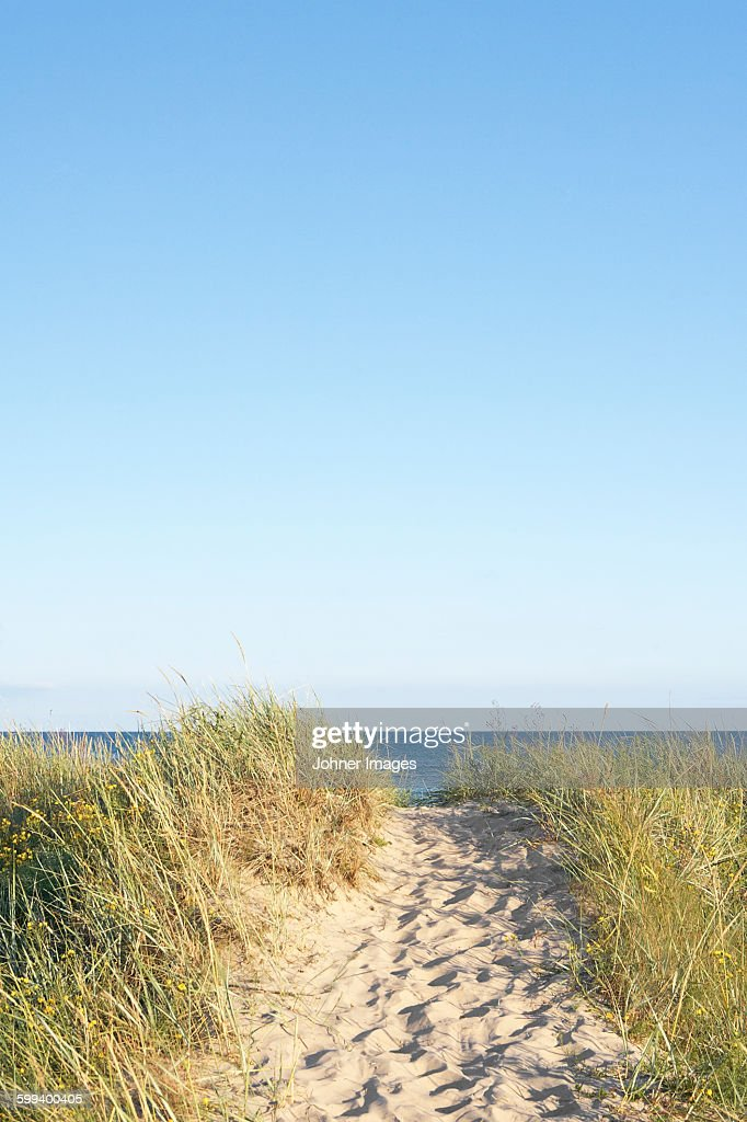 Path on beach : Stock Photo
