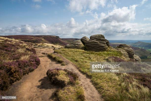 Path on Kinder Scout in summer, Peak District, Derbyshire, England