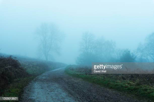 a path through moorland on a moody, dark, foggy, winters day - mystery stock pictures, royalty-free photos & images