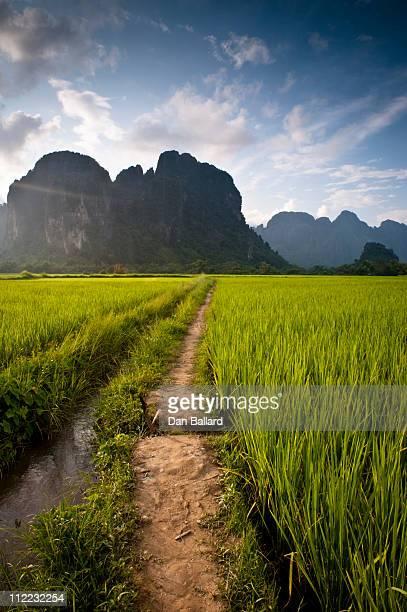 Path through rice paddies leading to mountains. Vang Vieng, Laos, Asia.