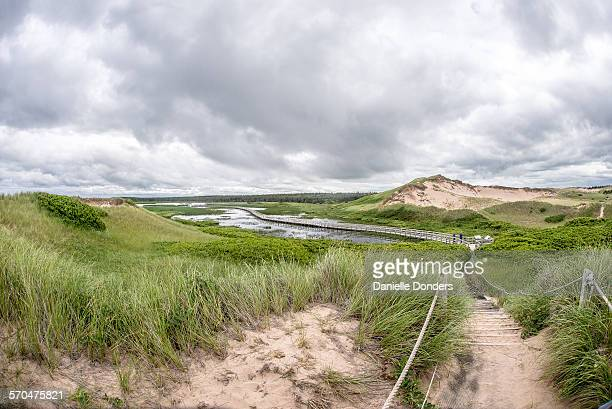 path through the dunes and boardwalk at greenwich - marsh stock pictures, royalty-free photos & images