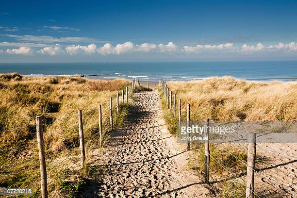 A path through the dunes