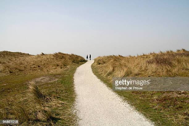 path through the dunes - stephan de prouw stock pictures, royalty-free photos & images