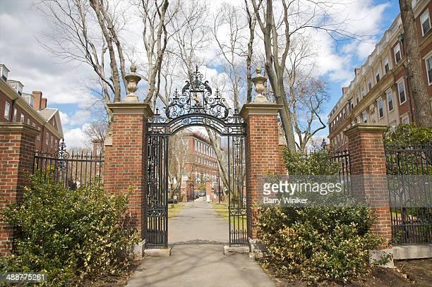 Path through wrought-iron gates