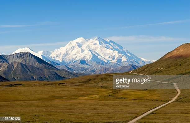 path to beautiful mount mckinley in alaska - mt mckinley stock photos and pictures