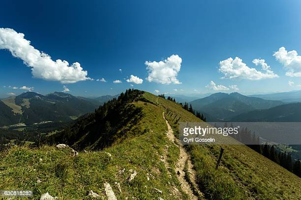 path to bodenschneid mountain summit - landschaft stock pictures, royalty-free photos & images