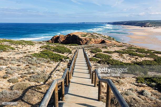 path to bordeira beach, carrapateira, algarve, portugal - algarve fotografías e imágenes de stock