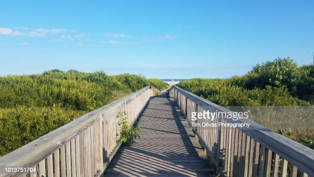 path to the beach - new jersey stock pictures, royalty-free photos & images