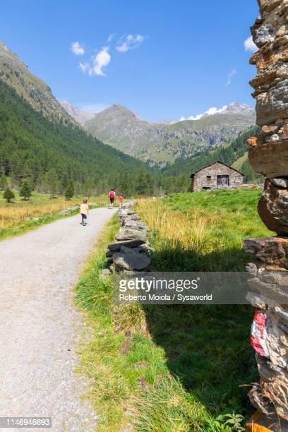 Path towards Rifugio Valmalza, Valcamonica, Italy