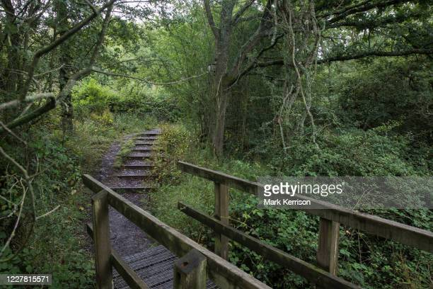 Path winds over a stream and through woodland at Calvert Jubilee Nature Reserve on 27 July 2020 in Calvert, United Kingdom. On 22nd July, the Berks,...