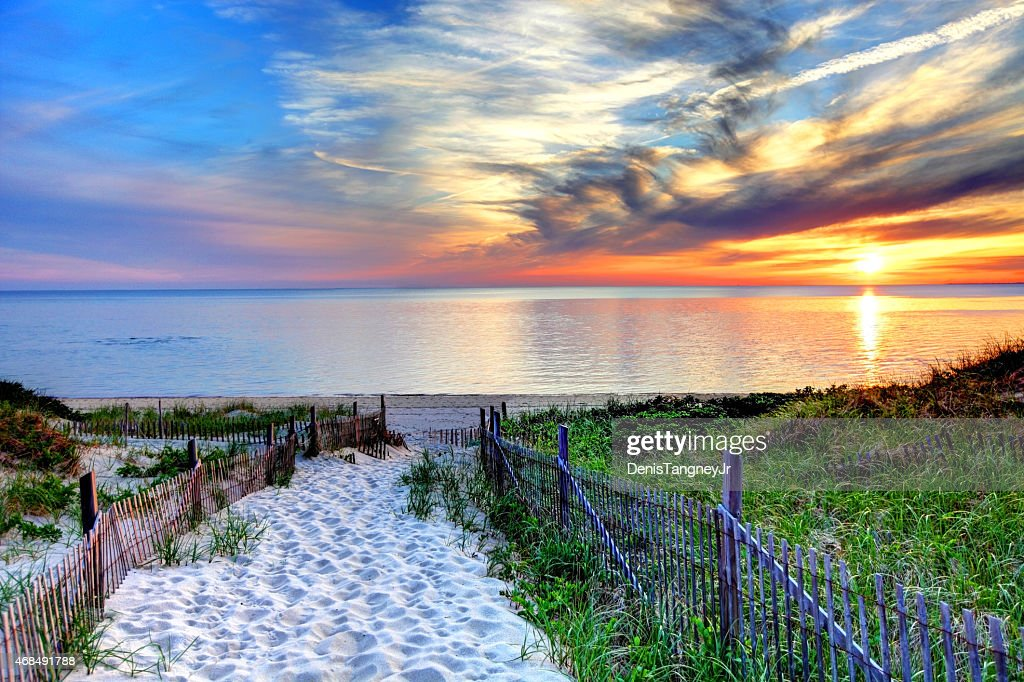 Path with beach fence on Cape Cod : Stock Photo
