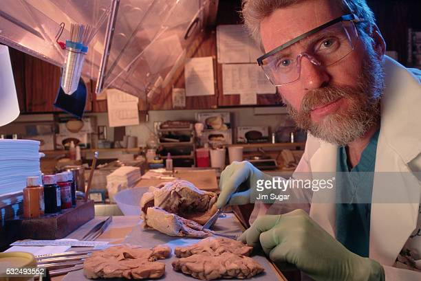 Pathologist Examining Human Organs