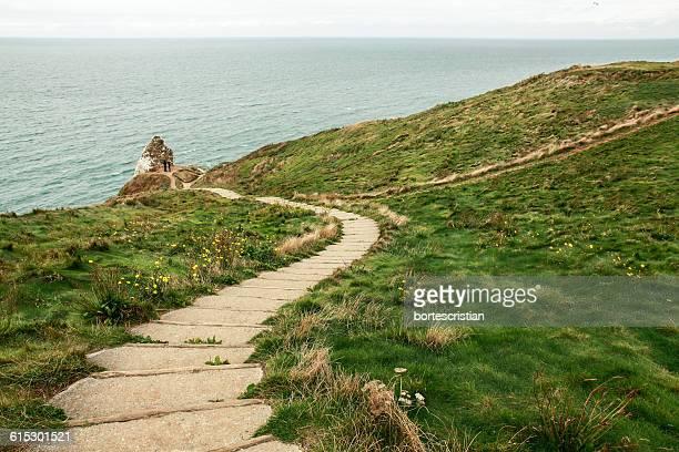 pathway amidst grassy field against sea - bortes cristian stock-fotos und bilder