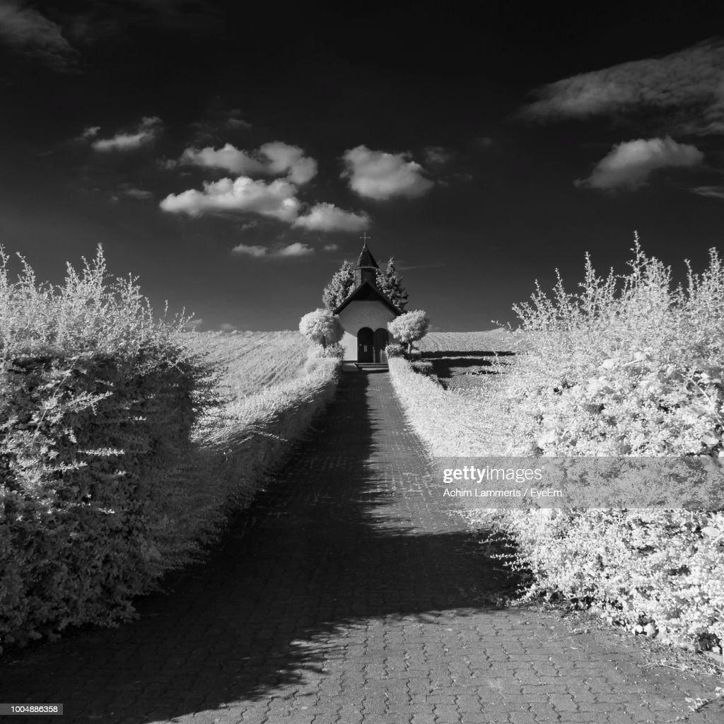 Pathway Amidst Plants Reaching Towards Church Against Sky : Stock-Foto