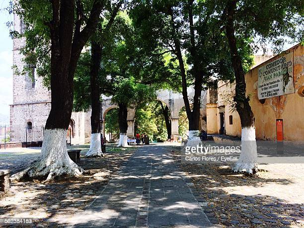 pathway amidst trees leading towards old building - tlaxcala stock photos and pictures