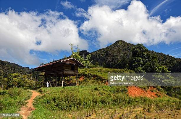 Pathway and scenery leading on to the Prayer Mountain at Kelabit Highlands, Bario, Malaysia.