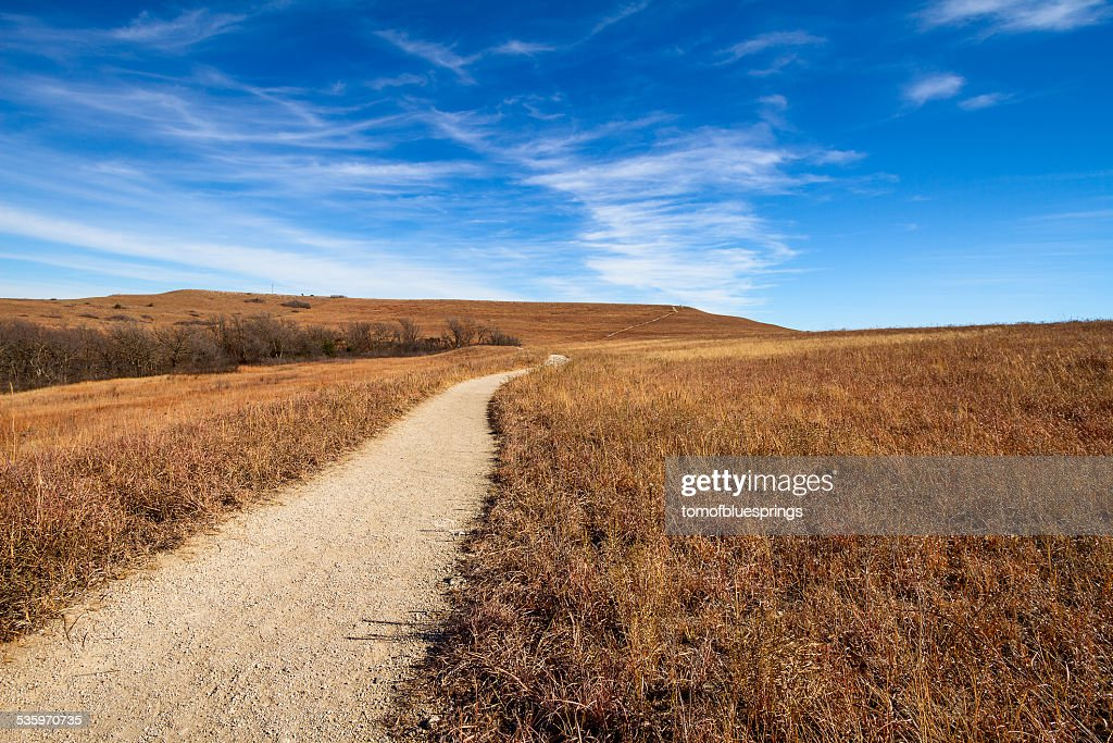 Pathway into the Prairie : Stock Photo