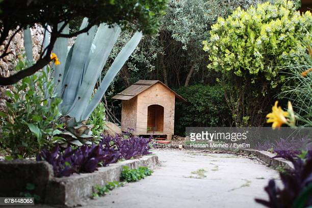Pathway Leading To Dog House Against Plants