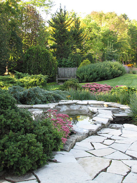 Pathway leading to pond