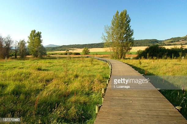 pathway - アラバ県 ストックフォトと画像