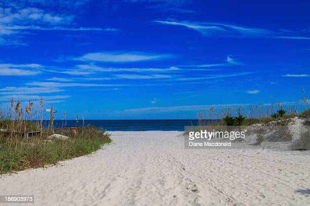 pathway to the beach, jacksonville  beach, florida - jacksonville beach stock pictures, royalty-free photos & images
