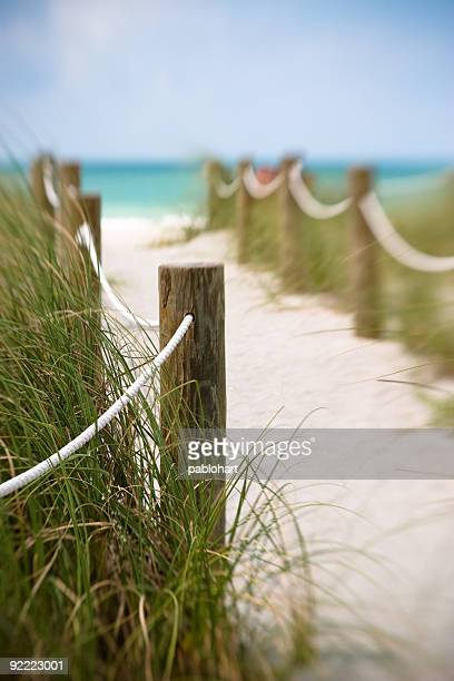 pathway to the beach - sarasota stock photos and pictures