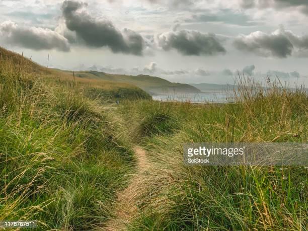 pad naar de zee - noordoost engeland stockfoto's en -beelden